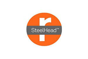 Riverbed SteelHead License