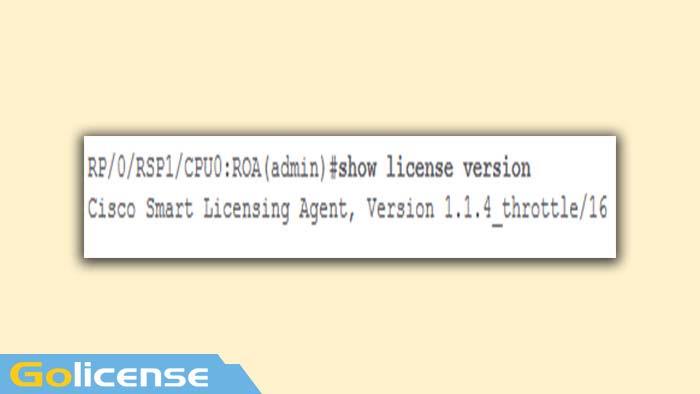 Show license version