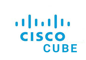 Cisco CUBE License