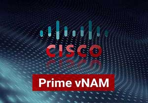 Cisco Prime vNAM License